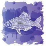 Fish_watercolor 向量例证