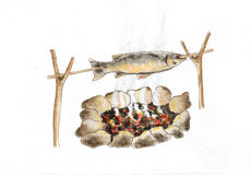 Fish. Watercolor and ink hand drawing of fish Royalty Free Stock Photography