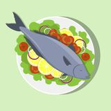 Fish on white plate with lemon, herbs, tomato, onion. Cooking of salmon. Vector flat illustration. Fish on white plate with lemon, herbs, tomato, onion. Cooking Royalty Free Stock Photography
