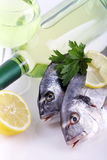 Fish and white wine Royalty Free Stock Photo