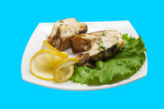 Fish in white wine Stock Images
