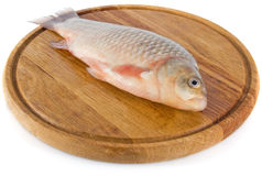 Fish on wooden board Stock Image