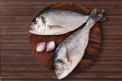 Fish on wooden chopping board. Stock Images