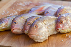 Fish on wooden cutting board ready for cooking Royalty Free Stock Photo