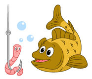 Fish and worm. Fish looking at a worm on a hook  on white background Royalty Free Stock Photos