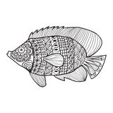 Fish zentangle style design for coloring book. For adult, tattoo, T shirt design, element -illustration Royalty Free Stock Image