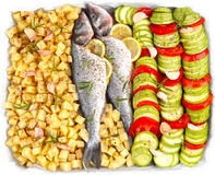 Fish with zucchini Royalty Free Stock Image