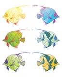Fish3 Photos stock