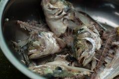 Fishbone of mackerel fish in a bowl Stock Photography