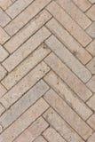 Fishbone Paving Pattern Stock Photos