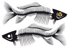 Fishbones,  Royalty Free Stock Images