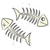 Fishbones vector. Illustration of two fishbones on white background Royalty Free Stock Photos