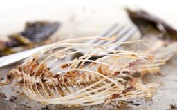 Fishbones on  plate. Near forks Royalty Free Stock Photos