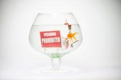 Fishbowl с крышкой и крюком греха знака запрета Стоковое Изображение