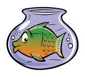 Fishbowl Stock Images