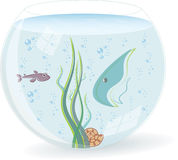 Fishbowl with fishes. Seaweed and shell. Vector Illustration Stock Image
