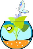 Fishbowl with flower. And butterfly Royalty Free Stock Photography