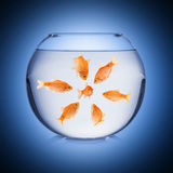 Fishbowl mobbing concept Stock Photo