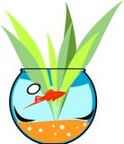 Fishbowl with platies fish Royalty Free Stock Image