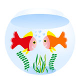 Fishbowl. Two loving fishes swim in round sea aquarium Royalty Free Stock Image