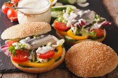 Fishburger用鲱鱼、小汤和新鲜蔬菜特写镜头 Ho 免版税库存照片