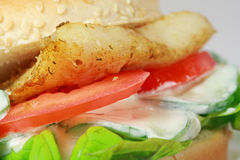 Fishburger Stock Photography