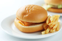 Fishburger. Close up of the fresh fishburger with french fries Stock Images