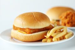 Fishburger. Close up of the fresh fishburger with french fries Stock Photo