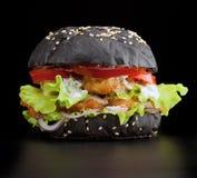 Fishburger Imagem de Stock Royalty Free