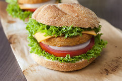 Fishburger close up. Close up to fishburger with fresh organic vegetables Stock Photo