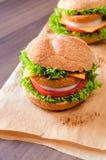 Fishburgers Royalty Free Stock Photography