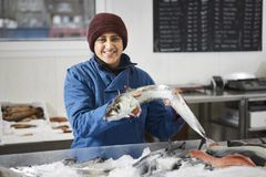 fishdealer presentated的鲜鱼 库存图片