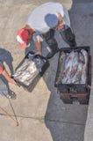 Fisher人工作在马德普拉塔港,在布宜诺斯艾利斯,阿根廷 免版税图库摄影