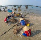 Fisher妇女在越南2 图库摄影