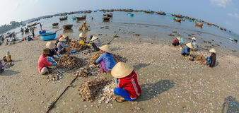 Fisher妇女在越南3 库存照片