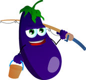 Fisher eggplant Stock Images
