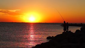 Fisher and gulls on sea at sunset stock video footage