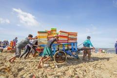 Fisher mężczyzna pracuje blisko Długiego Hai rybiego rynku zdjęcie royalty free