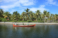 Fisher man fishing in backwaters Royalty Free Stock Photos