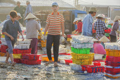 Fisher man working in Long Hai fish market Stock Images