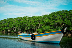 Fisher´s canoe. Typical brazilian fisher´s canoe on the river Royalty Free Stock Images