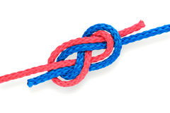 Fisher S Knot 04 Royalty Free Stock Photography