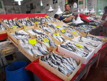 Free Fisher Selling Fishes On Fish Market Royalty Free Stock Photo - 98016095