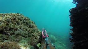 Fisher subaqu?tico da lan?a com arma que explora as ?guas Spearfishing no mar video estoque