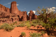 Fisher Towers Fotografie Stock