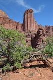 Fisher Towers Immagini Stock