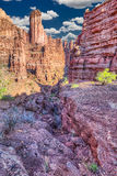 Fisher Towers Stock Photography