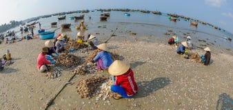 Fisher women in vietnam 3 Stock Photo