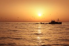 Fisherboat Professional Sardine Catch Sunrise Stock Photo