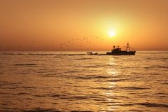Fisherboat professional sardine in sunrise Royalty Free Stock Photography